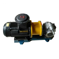 Marine Magnetic Electric Gear Oil Pump For Ship