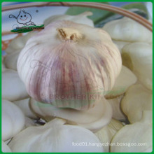 Fresh garlic Chinese/Normal white garlic/Jinxiang Garlic