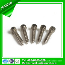 10# Hex Socket Head Self Tapping Screw