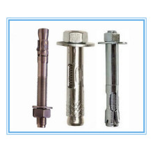 M6-M20 of Expansion Bolt with Stainless Steel