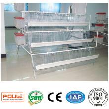 Cages de poulet de couche commerciale pour les fermes de volaille