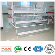 Commercial Layer Chicken Cages for Poultry Farms
