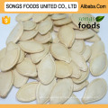 Alibaba Export Company Pumpkin Seeds 2016