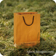Luxury Rope Handle Paper Shopping Bag