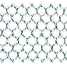1/4 Inch Galvanized Chicken Wire Mesh