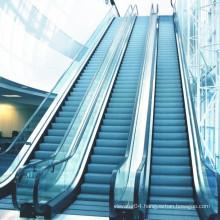 Professional Manufacturer Famous Brand XIWEI Automatic Escalator -- XIWEI Commercial