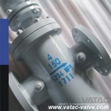 Tamis à panier à bride en acier inoxydable / filtre Ss304L / Ss316L