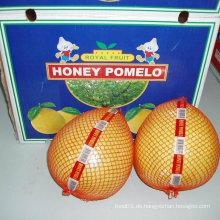 Neue Frucht Frische Honig Pomelo
