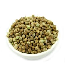 semillas de cáñamo de buena calidad para la venta