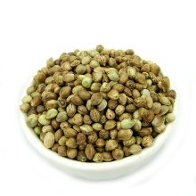Chinese high quality hemp seeds for bird food