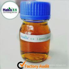 Industrielle Enzymlipase zur Herstellung von Biodiesel