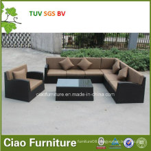 Gray and Black Livingroom Sofa in Home Garden Furnitures (CF1025)