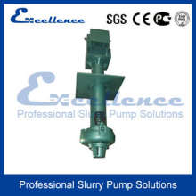 Vertical Submersible Slurry Pumps (EVM-200SV)