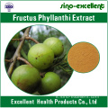 Estratto naturale di 100% Fructus phyllanthi