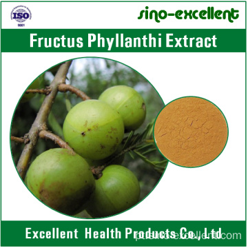 Extracto 100% natural de Fructus phyllanthi