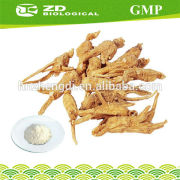 Alibaba Express Anti-aging foods Korean Red Ginseng Extract