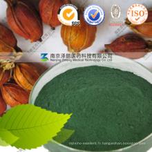 Additif alimentaire chinois Agent de couleur naturelle Gardenia Green Powder