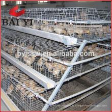 Nouveau design plus solide et durable cages de poulet pour les poussins d'un jour