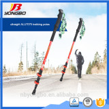 Factory Price Expandable nordic walking stick lock, quick lock, telescopic walking stick