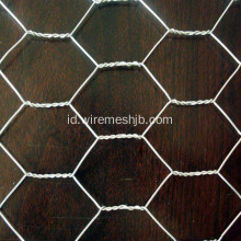 SS Hexagonal Wire Mesh