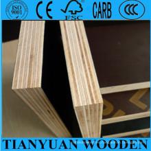 Película de 18 mm frente a la capa del obturador, madera dura