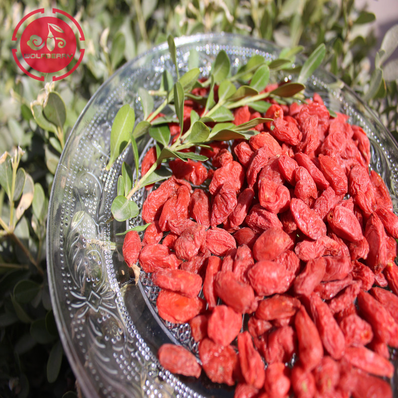 Superfood Nutritional Multiple Vitamin-Mineral goji berries
