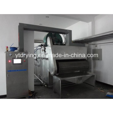 Dwvf Vegetable and Fruit Belt Dryer