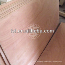 Hot sell 3.6mm/4.5mm plywood for Philippines market