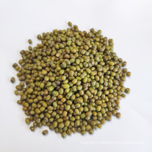 Hebei Green Mung Beans Seed Sprouting Starch For Sale