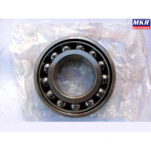 Angular Contact Ball Bearing 7236