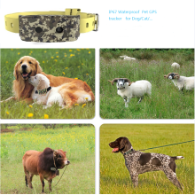 Waterproof GPS Pet Tracker 3G WCDMA