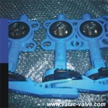 Semi-Lug/Fully Lug Butterfly Valve Lever API 599 150 Lbs Sg Iron