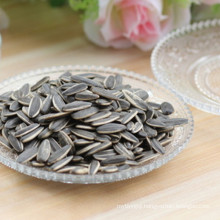 Processed pumpkin seeds competitive price