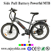 500W Powerful E-Bike Made in China 36V9ah E-Bicycle Electric Scooter (PE-TDE11Z)