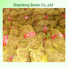 Chinese New Crop Ginger Exporting