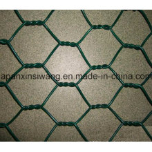 Hexagonal Netting