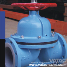 BS/DIN Straight Through/Weir Rubber/PTFE Lining Diaphragm Valve