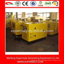 Небольшой дизельный генератор мощностью 8 кВт-50 кВт с марками Yangdong