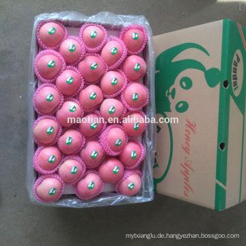 Verkaufe Yantai Fresh Red Fuji Apfel