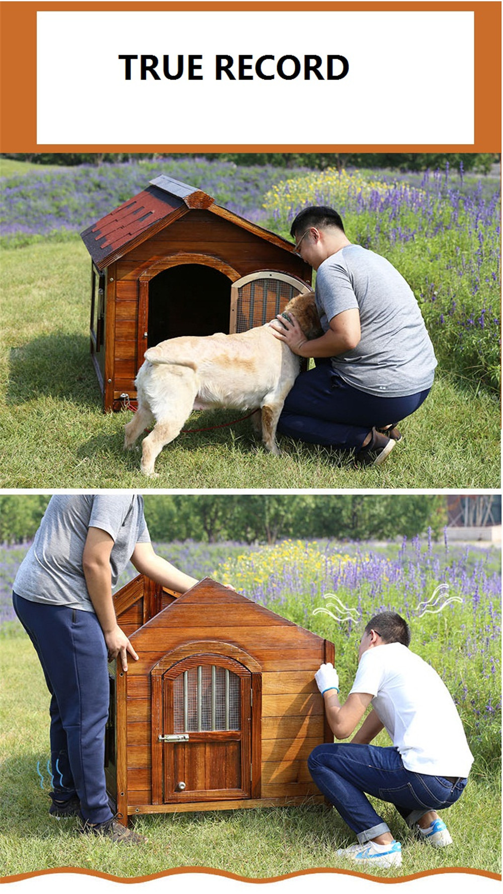 pet house with removable floor