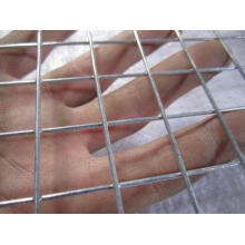 Low Carbon Steel Welded Wire Mesh Rust Resistant Netting Fo