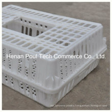 Plastic PE Material Chicken Transport Cage