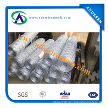 Electro Galvanized Steel Hexagonal Wire Mesh and Hot Dipped Galvanized Steel Hexagoanl Wire Mesh (direct supplier)