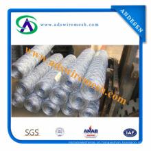Rede de arame sextavada de aço galvanizada eletro e rede de arame de aço galvanizada mergulhada quente de Hexagoanl (fornecedor direto)