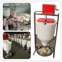 Alimentador de cerdo mojado seco automático