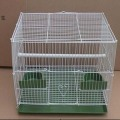 PVC Cotaed Bird Cage Drahtmaterial