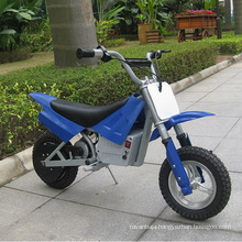 China Factory Electric Mini Dirt Bike for Young Kids (DX250)
