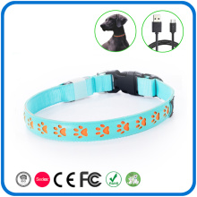 Nachtsicherheit LED Glow Luminous Hundehalsbänder