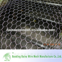 Chicken Coop Galvanized Wire Mesh