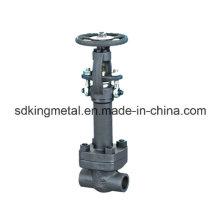 Válvula de porta de flange de aço forjado